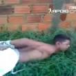 Brasile, ladro incaprettato gettato sul formicaio04