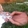 Brasile, ladro incaprettato gettato sul formicaio03