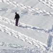 Simon Beck, l'artista che crea disegni calpestando la neve 08