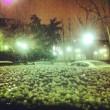 Violenta grandinata a milano le strade sembrano ricoperte di neve03