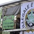 A Roma sflia la Marijuana March. Marco Pannella contestato (foto)3