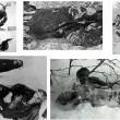 I corpi straziati del Passo Dyatlov