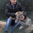 Putin entra nella gabbia del leopardo (foto01