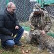 Putin entra nella gabbia del leopardo (foto03