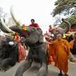 La Thailandia festeggia gli elefanti con buffet di frutta e verdura01