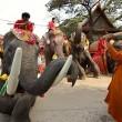 La Thailandia festeggia gli elefanti con buffet di frutta e verdura02