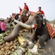 La Thailandia festeggia gli elefanti con buffet di frutta e verdura05