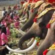La Thailandia festeggia gli elefanti con buffet di frutta e verdura06