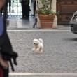 """Berlusconi smentisce matrimonio con Francesca Pascale: """"Sono troppo vecchio"""""""