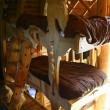Belgio, l'hotel degli gnomi a forma di cavallo di Troia11