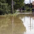 Serbia e Bosnia sott'acqua: inondazioni provocano almeno 40 morti02