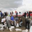 Serbia e Bosnia sott'acqua: inondazioni provocano almeno 40 morti07