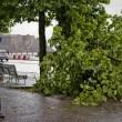 Maltempo Napoli, bomba d'acqua e vento forte in città03