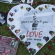 Michael Jackson moriva 5 anni fa: fan spargono 15 rose sulla tomba16