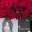 Michael Jackson moriva 5 anni fa: fan spargono 15 rose sulla tomba13