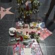 Michael Jackson moriva 5 anni fa: fan spargono 15 rose sulla tomba11