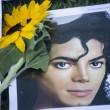 Michael Jackson moriva 5 anni fa: fan spargono 15 rose sulla tomba06