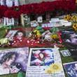 Michael Jackson moriva 5 anni fa: fan spargono 15 rose sulla tomba21