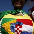 Mondiali Brasile 2014. La cerimonia di apertura01