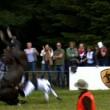 Benjamin Winter muore schiacciato da cavallo durante concorso ippico (foto) 3