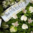 Ciro Esposito: FOTO-racconto dei funerali a Scampia