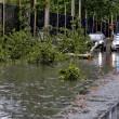 Nubifragi da Roma a Napoli: bombe d'acqua causano allagamenti e danni (foto) 13
