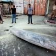 Gaza, oltre 170 morti e 1000 feriti: continua il lancio di missili Israele-Hamas 09