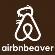 Airbnb, il nuovo logo scatena la Rete: da Ace Ventura ai Massoni 17