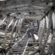 Gaza, ancora scontri e raid aerei: 26 morti, anche donne e bambini 09
