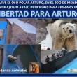 La petizione per salvare Arturo4