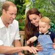 Principe George compie un anno01