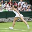Tennis, Wimbledon. Errani-Vinci per la prima volta in semifinale