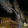 San Lorenzo, notte di processioni e stelle il 10 agosto, ma le più belle il 12 4