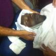 Algeria, Albert Ebosse colpito da un oggetto in campo muore01