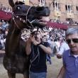 Palio di Siena, vince la Civetta. Il trionfo di Andrea Mari su Occolè