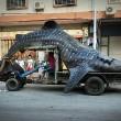 Cina, squalo balena sul carretto: pesa 2 tonnellate, lungo 5 metri