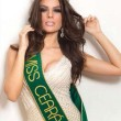 Melissa Gurgel è la nuova miss Brasile 2014 13