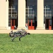 Il ghepardo-robot in grado di correre4