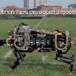 Il ghepardo-robot in grado di correre01