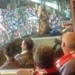 Heather McCartney, la sua squadra vince e lei si spoglia nello stadio FOTO
