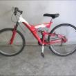 Bergamo, ritrovate 8 biciclette rubate, Procura pubblica foto05