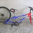 Bergamo, ritrovate 8 biciclette rubate, Procura pubblica foto04