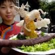 I 10 piatti più ripugnanti del mondo: tarantole, pesci vivi-morti, peni, occhi...