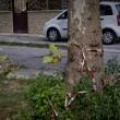 apoli, ignora l'alt. Carabiniere uccide 17enne. Folla distrugge auto polizia07
