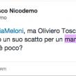 """FdI """"ruba"""" foto di Oliviero Toscani per spot anti-gay. Lui: """"Vi denuncio"""" 03"""