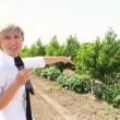 """Le Iene, Nadia Toffa e la Terra dei Fuochi: """"Lo Stato promette ma..."""" VIDEO"""
