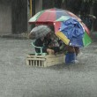 Manila completamente allagata per piogge monsoniche: scuole e uffici chiusi FOTO05