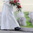 Centenario Prima guerra mondiale, Papa Francesco: La guerra è una follia05