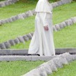 Centenario Prima guerra mondiale, Papa Francesco: La guerra è una follia03