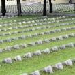 Centenario Prima guerra mondiale, Papa Francesco: La guerra è una follia02